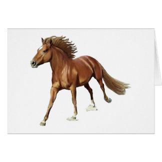 Triumphant Horse Card