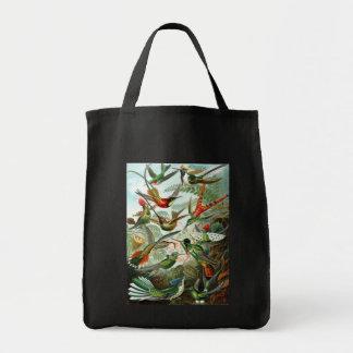 Trochilidae Hummingbirds, Ernst Haeckel Tote Bag