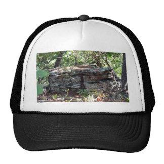Troll House Trucker Hat
