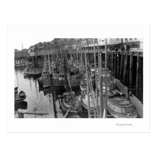 Trolling Fleet at Ketchikan, Alaska Photograph Postcard
