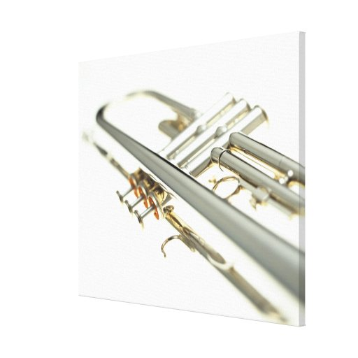 Trompeta 2 lona estirada galerias