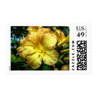 Trompeta amarilla sellos postales