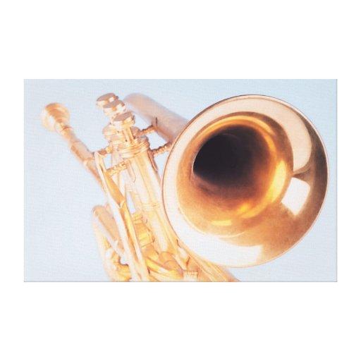Trompeta detallada lona envuelta para galerías