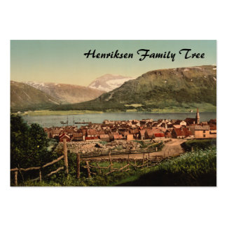 Tromso, Troms, Nord-Norge, Norway Large Business Cards (Pack Of 100)