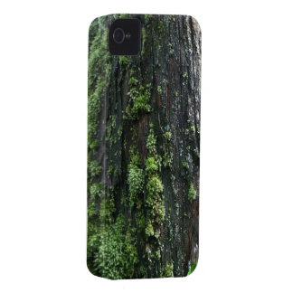 Tronco cubierto de musgo iPhone 4 Case-Mate cárcasa