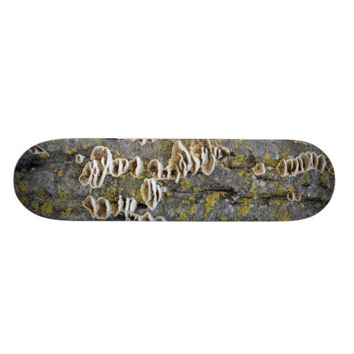 Tronco de árbol con el liquen patinetas personalizadas