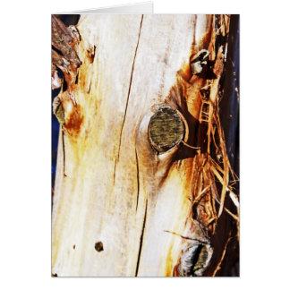 Tronco de árbol con los nudos felicitacion
