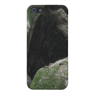 Tronco de árbol cubierto de musgo hueco iPhone 5 carcasa
