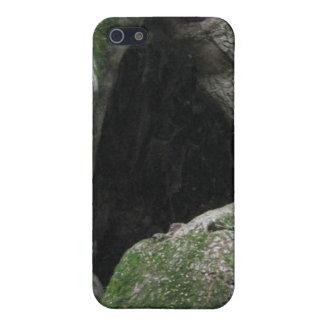 Tronco de árbol cubierto de musgo hueco iPhone 5 fundas
