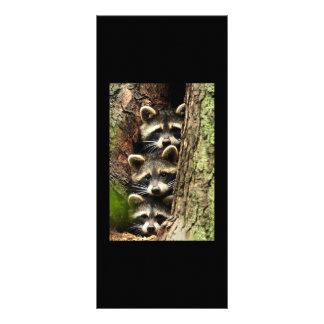 tronco de árbol de cute_funny_animals_41 tres Racc Lonas Personalizadas