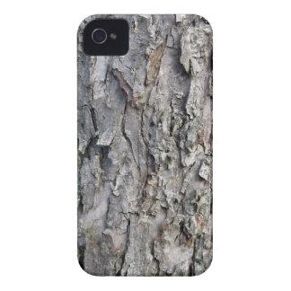Tronco de árbol de madera gris gastado iPhone 4 funda