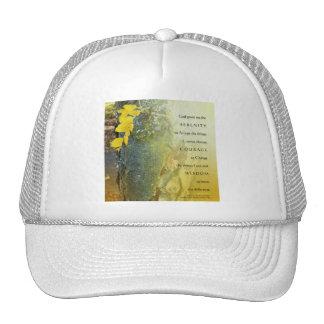 Tronco de árbol del rezo de la serenidad y gorra d