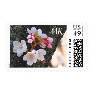 Tronco de árbol floreciente de Sakura de la flor Sello