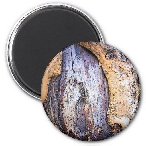 Tronco de árbol imán redondo 5 cm