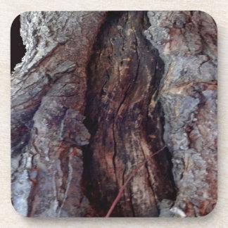 Tronco de árbol natural orgánico por Sharles Posavasos