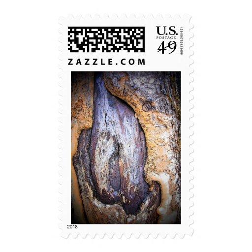 Tronco de árbol sello