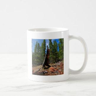 Tronco hueco de los árboles de la naturaleza taza