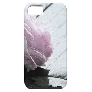 Tronco largo en colores pastel pálido subió en cub iPhone 5 Case-Mate coberturas