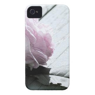 Tronco largo en colores pastel pálido subió en cub Case-Mate iPhone 4 fundas