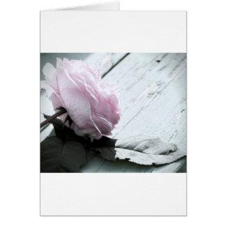 Tronco largo en colores pastel pálido subió en cub tarjeta de felicitación