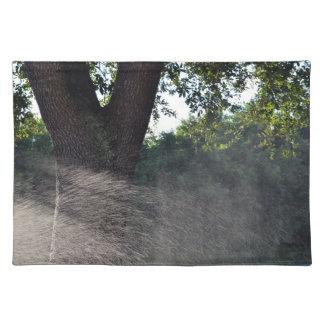 tronco viejo del roble con la regadera mantel