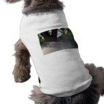 tronco viejo del roble con la regadera camisetas mascota