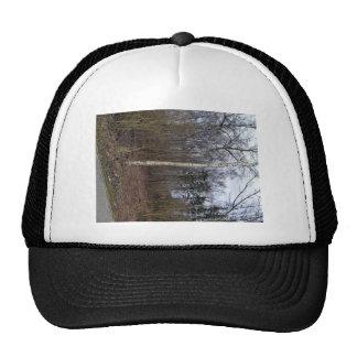 Troncos de árbol en paisaje gorras de camionero