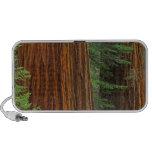 Troncos de la secoya gigante en el bosque, Yosemit Portátil Altavoz