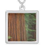 Troncos de la secoya gigante en el bosque, Yosemit Pendiente Personalizado