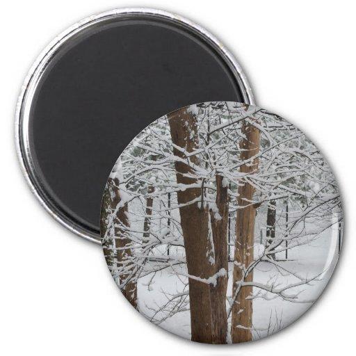 troncos nevosos imán redondo 5 cm