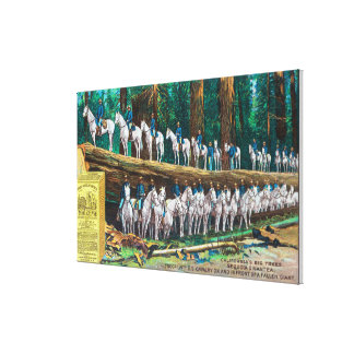 Troop I on and in front of Fallen Giant Stretched Canvas Print
