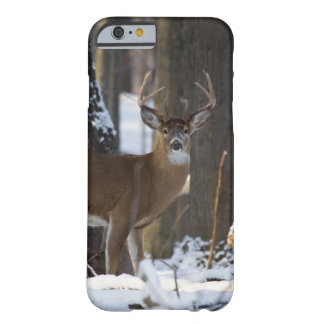 Trophy Buck Barely There iPhone 6 Case