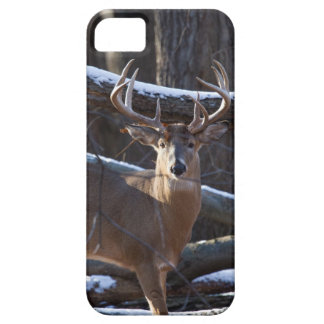 Trophy Buck iPhone SE/5/5s Case