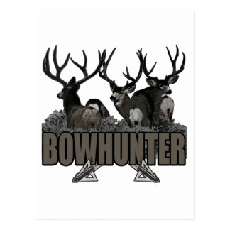 Trophy Bucks Bowhunter Postcard
