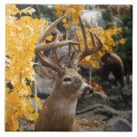 Trophy Deer Ceramic Tile<br><div class='desc'>Trophy Deer</div>