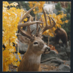 "Trophy Deer Cloth Napkin<br><div class=""desc"">Trophy Deer</div>"