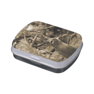 Trophy Deer Jelly Belly Candy Tin