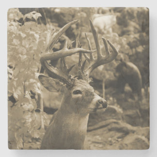 Trophy Deer Stone Coaster