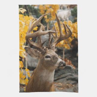Trophy Deer Towel