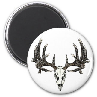 Trophy Whitetail buck 2 Inch Round Magnet