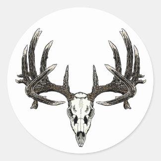 Trophy Whitetail buck Classic Round Sticker