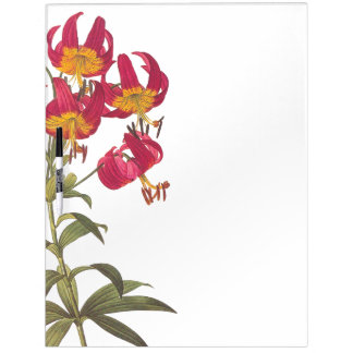Tropical Asiatic Lily Flowers Floral Erase Board