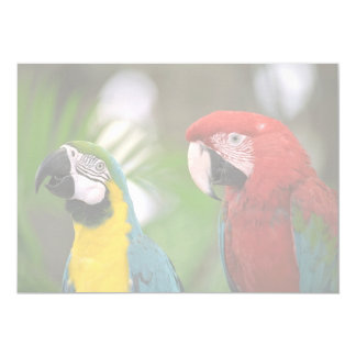 tropical background 5x7 paper invitation card