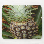 Tropical Backyard Pineapple Mousepad