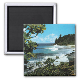 Tropical beach 2 inch square magnet