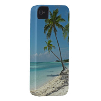 Tropical Beach Blackberry Curve Case Case-Mate iPhone 4 Cases