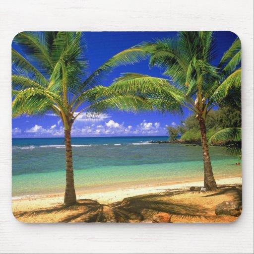 tropical beach mousepads