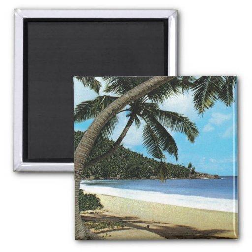 Tropical beach painting fridge magnets