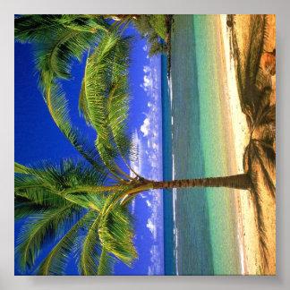 Tropical Beach Paradise Poster
