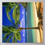 Tropical Beach Paradise Print